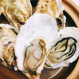 """""""Oyster with shell"""" from Murotsu, Hyogo appearance!"""